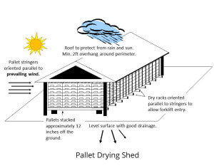 Often, how the pallet is stored can keep mold from forming.  This pallet drying shed illustrate different techniques for keeping pallets dry and free of mold.